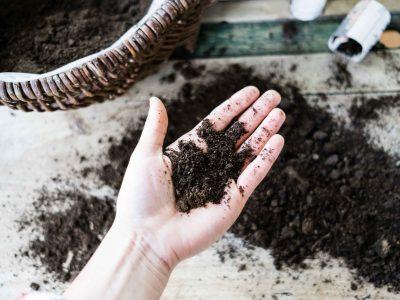 Gute Erde- für den Gartenboden und den Balkon