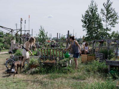 Inspiration - Wasa Urban Gardening Workshop in Berlin