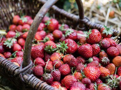 Erdbeer-Rosenblüten-Lavendelmarmelade