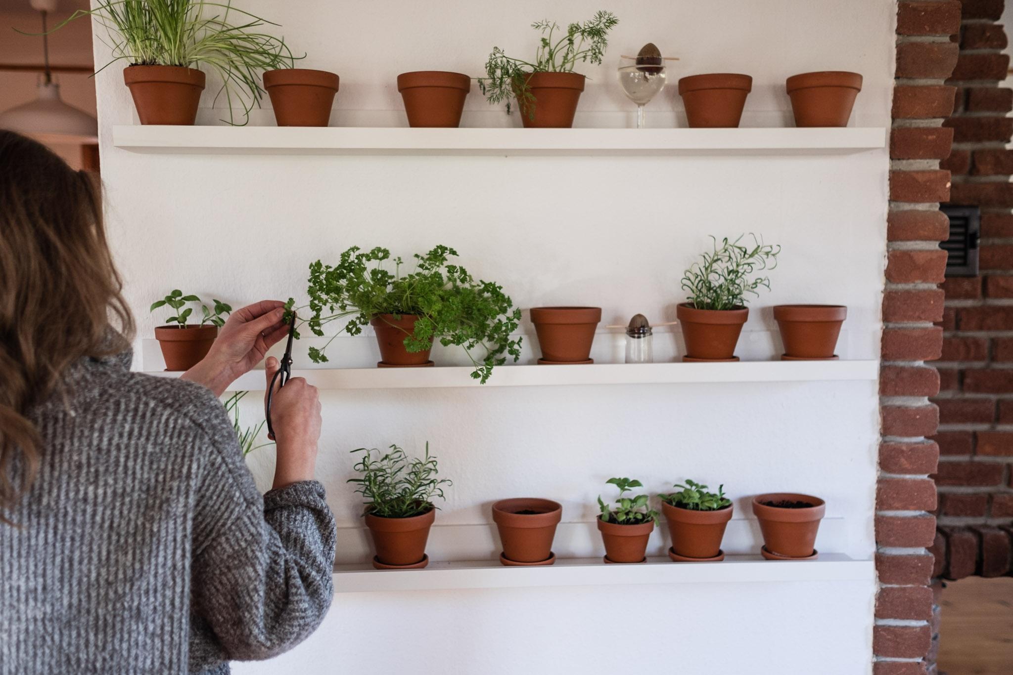... Gegenüberliegende Kahle Wand Bis Zu Den Feiertagen Gestaltet Werden  Kann, Kam Der Berühmte U201eAha Effektu201c Und Die Idee Für Ein  Kräuter/Gemüseregal, ...