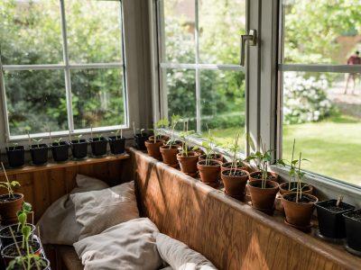 Gartengestaltung Teil 5: Anbauplan in der Praxis