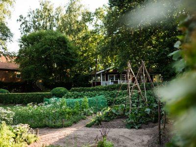 Anbauplan und Gartenkalender für den Bauerngarten