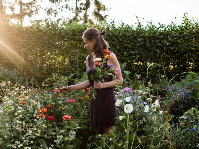 Gartengestaltung Teil 3: Fruchtfolge, Fruchtwechsel, Mischkultur