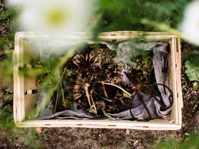 2. Saatguttausch von Osmers Garten