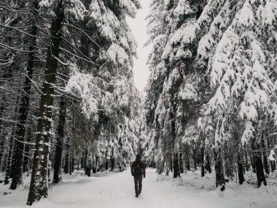 SMARTPHONE WALLPAPER: Winter