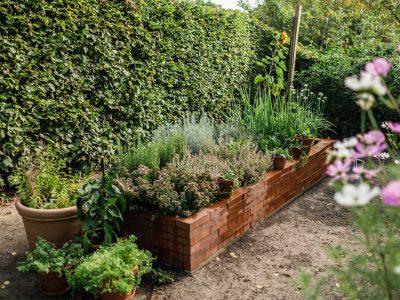 Living at Home x Osmers -Anbauplan und Gartenkalender für das Hochbeet-
