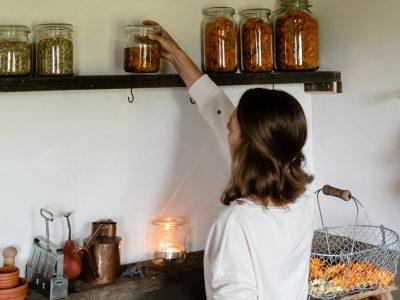 Ringelblumenöl selber herstellen