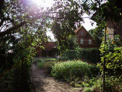 Workshop: Das Gartenjahr im naturnahen Garten