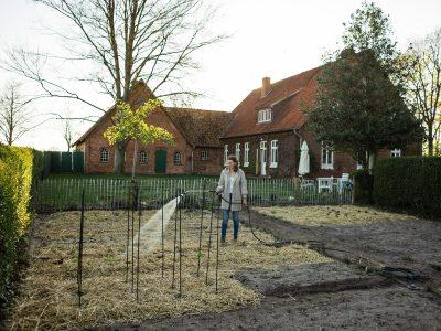 Pipelinesystem zur Gartenbewässerung verlegen